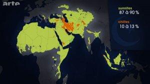 prozent shiiten und sunniten